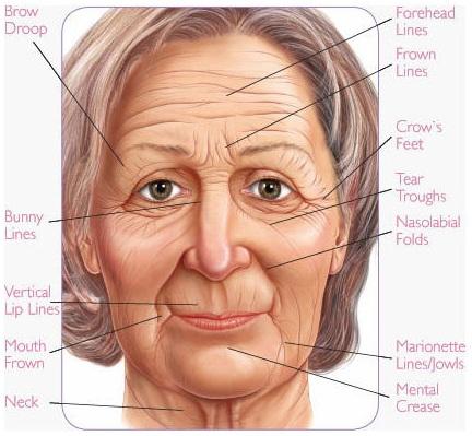 Face fillers treatment,lip enhancement,wrinkles jalandhar punjab